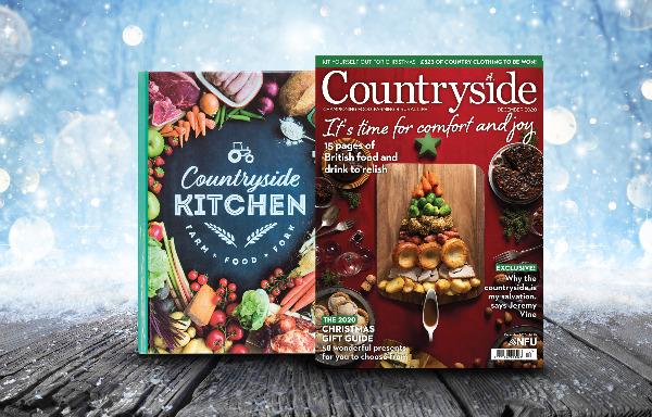 Countryside Christmas Cover