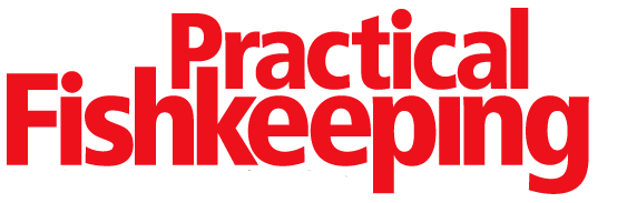 Practical Fishkeeping logo